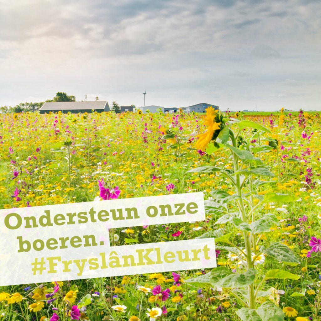 Fryslân Kleurt campagne Klant in Zicht - Ondersteun de boeren