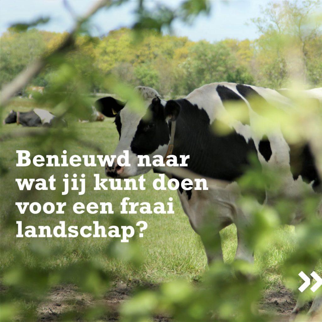 Living Lab Fryslân - Fryske landschap